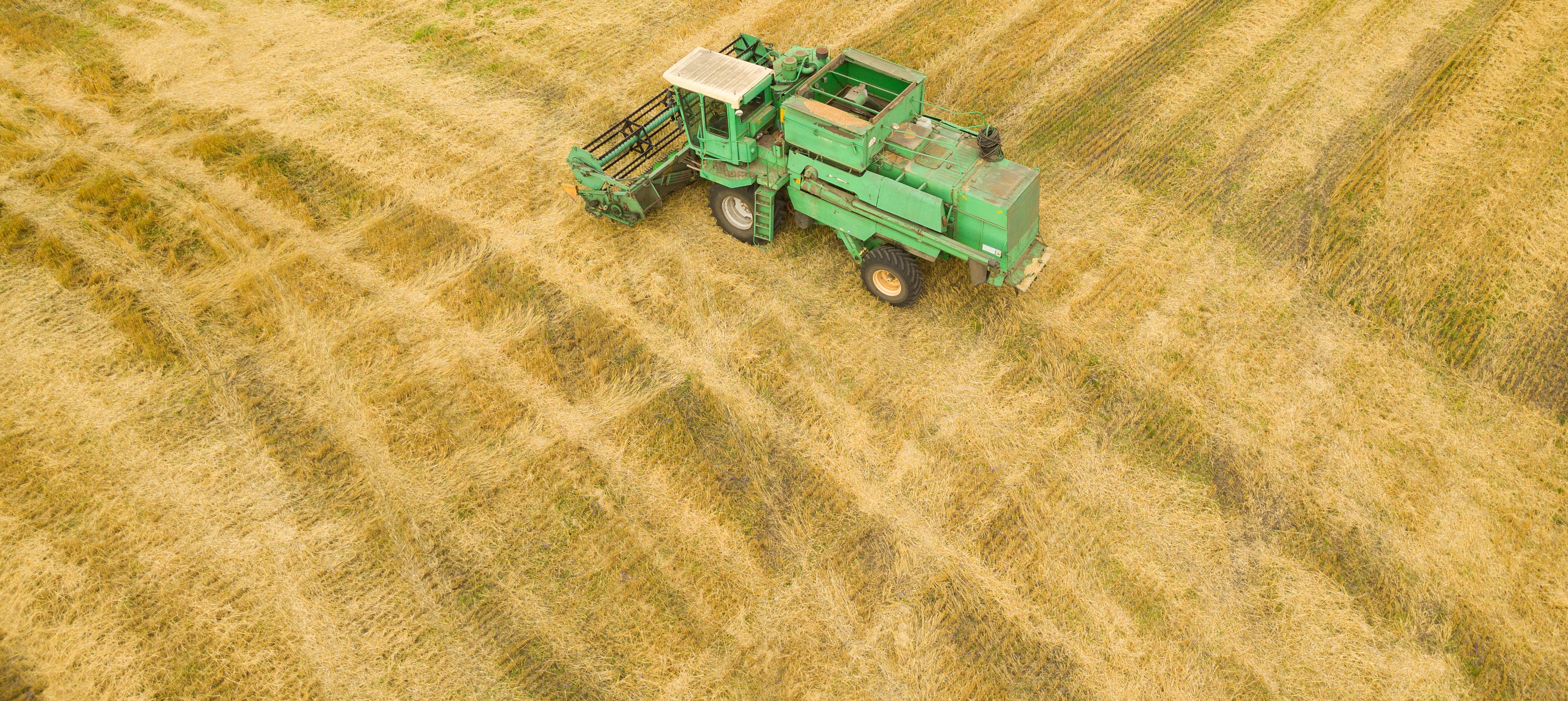 top-view-combine-harvester-gathers-the-wheat-at-P2CDRNT cropped